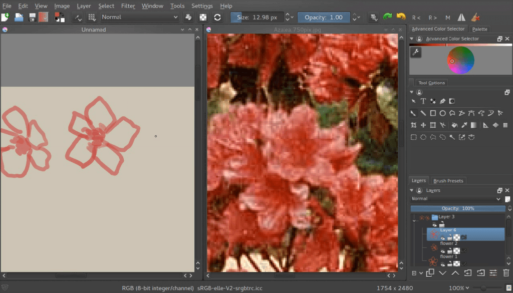 making the outline of the flowers