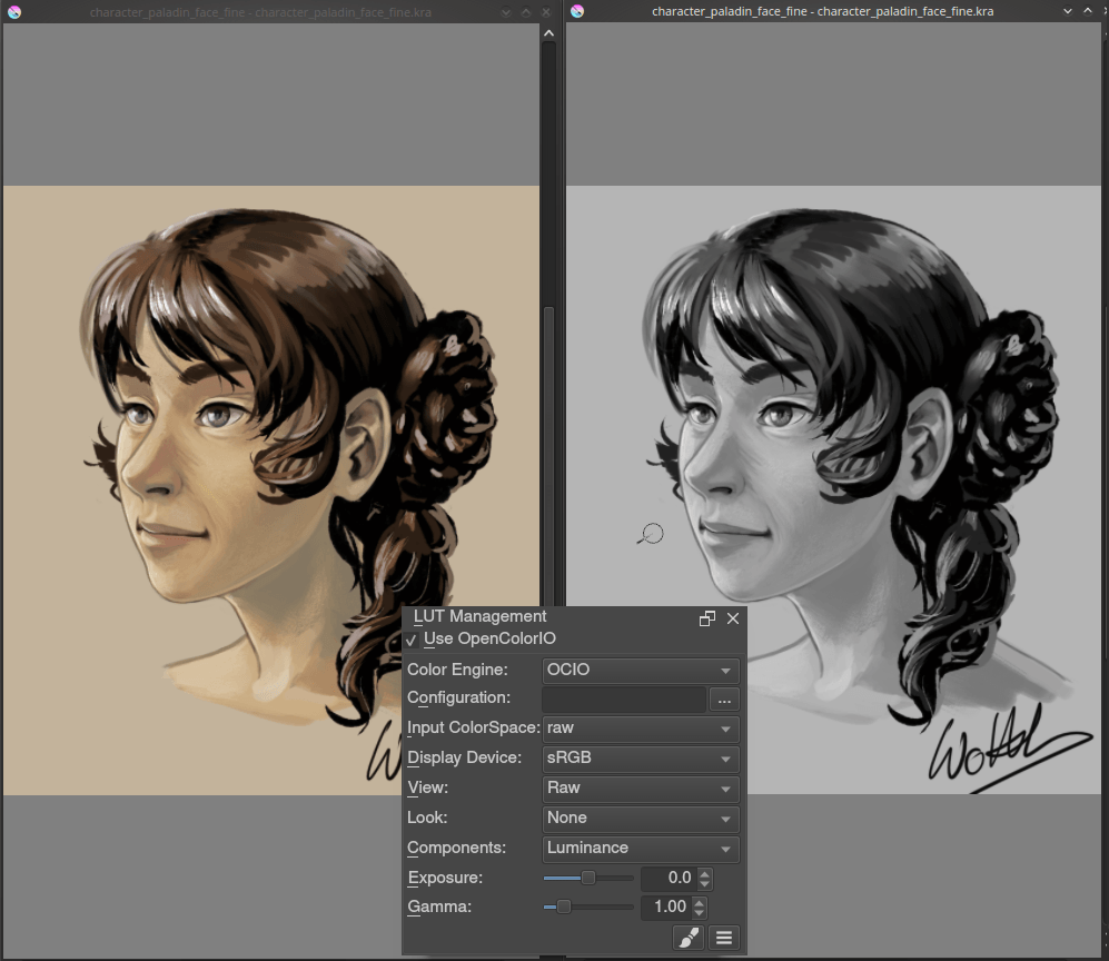 ../../_images/Krita-view-dependant-lut-management.png